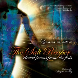 The Salt Reaper poetry/music CD cover with its fierce color and light design.