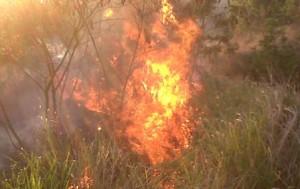 Courtesy - Bajan Firefighters' Blog