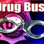drug bust(2)
