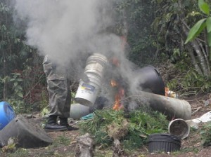 Marijuana trees and planting implements used to cultivate the illegal drug burnt on site by Officers of the Special Task Force on Nevis