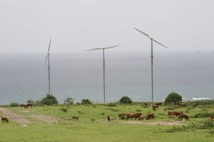 Three of the wind turbines up and running at Maddens during 100 hour test period