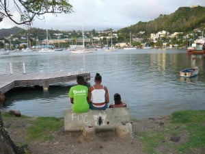 Citizens in Defence of Grenada's Lands and Heritage look forward to the administration of the National Democratic Congress keeping its commitment to review and make public the transactions involving the people's property including the Lagoon and the Lagoon Park. In the meanwhile, the watchdog group continues to keep an eye on the multi-million investment.