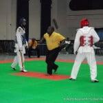 Taekwondo Berger 128