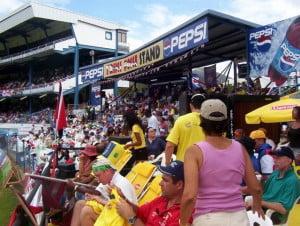 #cricket #trinidad #party #fete