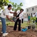 thompson labega belair tree planting 2012