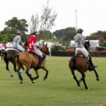 {CLICK FOR BIGGER} Polo Season in Barbados - How to Play the Game of POLO