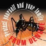 anti dengue