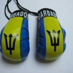 mini boxing gloves ggsouvenirs