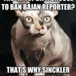 Bald Pooch Sinckler Edition 2013
