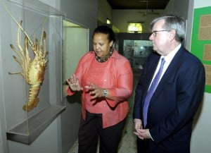 Director of the Museum Alissandra Cummins (left) explains some aspects of the island's natural history to Rik Parkhill, using the giant lobster specimen as an example.