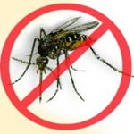 dengue malaise