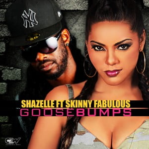 """Shazelle has had a very successful start to 2013! Her songs, """"If We Fell In Love"""" and """"Take Me Tonight"""", will appear in different episodes of the new TV series, ROGUE, starring Thandanie Newton (The Pursuit of Happyness, Mission Impossible II, Crash, For Colored Girls) and Martin Csokas (The Lord of the Rings, Kingdom of Heaven)."""