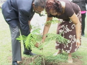 Eustace Warner and Venetta Brown placing plant in the ground