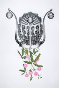 Mimosa pudica (Yaba), 2011 Hand-colored lithograph on frosted mylar, by Joscelyn Gardner (Barbados)