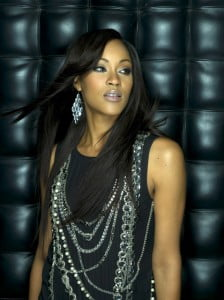The star attraction is the incredibly talented singer and Grammy Nominee, Shontelle, also featuring is the dazzling Guy Marc Vadeleux Trio from Martinique, Guitarist Derek McKeith (USA) and his jazz funk band plus from Barbados, The Original Unit jazz trio with special guest St Vincent International Recording Artist Frankie McIntosh.