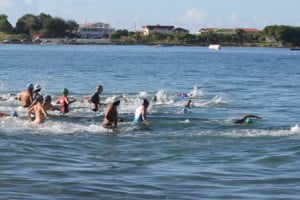 Some participants in the first MaccaX Nevis International Triathlon held in Nevis on November 16, 2013 swimming at Gallows Bay at the start of the race