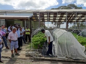 Visitors listen attentively as Dr. Cyril Roberts explains the  intricacies of hot pepper breeder seed production.