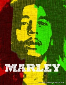 In 2014, MAX brings you the best international content and the most award-winning films, documentaries and series, all in their original language and with English subtitles, including the biographical documentary Marley, detailing Bob Marley's life and music career though testimonies from those who knew him best. In Searching for Sugar Man, winner of the 2013 Academy Award for Best Documentary Feature, two eager fans from Cape Town go on a search for American folk musician Sixto Rodriguez, whose short career still garnered a huge fan base for him in South Africa.