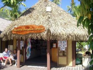 Granted, this CMV design includes authentic Caribbean cultural elements such as thatched roofs and round benabs that are original to the Amerindians of the Caribbean region... But do Caribbean folk wish to be thought of as still living in a grass hut?