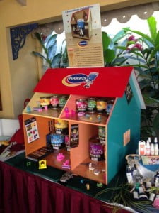 Harris Paints' famous house on display at the event