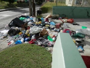 I never thought such an act would occur in our beautiful Barbados which boasts of a highly educated population and why do such in an area where tourist traffic is continual and will knowingly affect our main foreign exchange earner? I was perplexed and wondered what I should do. Why the dumping? Was someone sending a message? What should I do? Accept that this is now an accepted Bajan custom and keep a low profile or speak up and inform the public via media that such an act has no place in our society? Is it my duty to locate the perpetrator(s) so that could speak to him/her/them? Definitely more questions than answers.