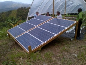 """Work has already begun using the model of the award winning """"The Family Garden"""" project which has introduced sustainable farming practices, provided more than 40 jobs and a reliable electricity supply in Jack's Hills, St. Andrew."""