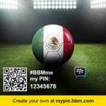 BBM 2014 Brazil MyPin