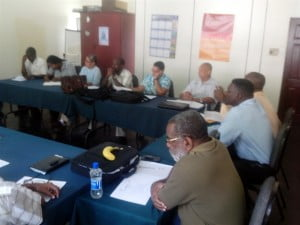 Stakeholders at the Grenada consultation