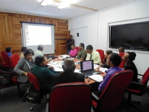 Stakeholder provide invaluable contributions at the Consultation hosted at CARDI's Head Office in Trinidad