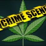 CBS Marijuana