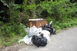 "Ms. White went on to urge Barbadians to stop dumping. ""It can have a ripple effect after it all builds up. Take the nature trail through Whim Gully, for example, its natural aesthetic is being distorted because of dumping. And of course there are potential issues if water courses become blocked."""