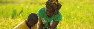 The Global Dialogue capitalizes on the mobilisation that has taken place as a result of United Nations General Assembly designating 2014 as the International Year of Family Farming (IYFF), setting off a series of regional and country initiatives to support this sector that produces 80 percent of food worldwide.