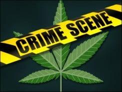 CBS-Marijuana