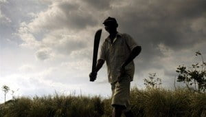 Drawing on Haiti's revolutionary history and modern struggles, the short documentary explores the mysterious martial art of tire machèt - Haitian machete fencing - through the practice of one man, an impoverished Haitian farmer named Alfred Avril.