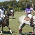 "Barbados Polo Club Secretary Stewart Gill said: ""Sunday's three matches featuring the Villages team from the USA vs Barbados final, the first of the Battle of the Sexes matches and a closely-fought local match, offered sponsors a perfect platform to showcase their products and reward their valued customers. Having set out this year to broaden the appeal of polo, the Club was very encouraged by the huge turnout. Good food, drinks and fun were enjoyed by all. I'd say the afternoon was a tremendous success."""