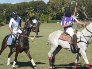 """Barbados Polo Club Secretary Stewart Gill said: """"Sunday's three matches featuring the Villages team from the USA vs Barbados final, the first of the Battle of the Sexes matches and a closely-fought local match, offered sponsors a perfect platform to showcase their products and reward their valued customers. Having set out this year to broaden the appeal of polo, the Club was very encouraged by the huge turnout. Good food, drinks and fun were enjoyed by all. I'd say the afternoon was a tremendous success."""""""