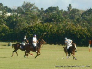 On the event's opening day, Apes Hill Polo White defeated ICBL 7-3, while Silver Point overcame Lion Castle 7-4.