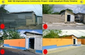 Total transformation: From top left to bottom right the photos chronicle the transformation of the KAMS Aquarium Fish Shop thanks to the National Imitative for Service Excellence (NISE) Inc.