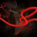 Ebola virus Caribbean360