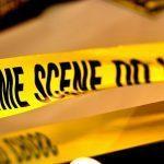 Crime Scene Investigation stem works