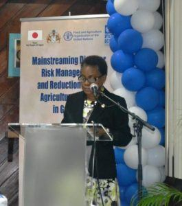 (FILE IMAGE) Lystra Fletcher-Paul, the Food and Agriculture Organization's (FAO) sub-regional coordinator for the Caribbean, says that the initiative can be helpful in combating the serious problem of diet-related non-communicable diseases.