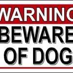 beware of dog pinterest