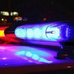 cop car patch juveniles