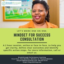 Ad for Mindset for Success Consultation