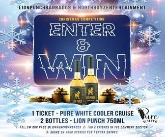Lion Punch 11 Dec 2020