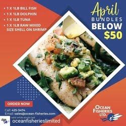 Ocean Fisheries 2021 April 4