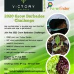 With this in mind Victory Gardens Caribbean in partnership with Farm Finder Global and the National Conservation Commission have launched the 2020 Grow Barbados Challenge to encourage Barbadians, especially first time gardeners to get growing.