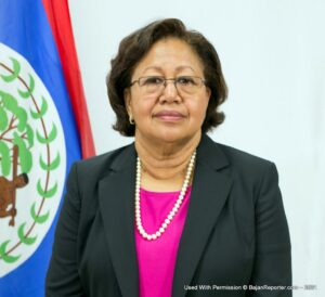 <strong>Dr Barnett</strong>, a national of Belize, is the first woman and the first Belizean to be selected for the post. She will replace Ambassador Irwin LaRocque who is completing his second term. She will assume office on 15 August 2021.