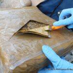 RBPF Destruction of Drugs 2021 05 14 11