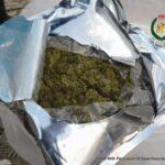 RBPF Destruction of Drugs 2021 05 14 15